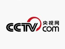 17 CCTV